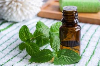 Peppermint essential oil. Image: www.organicfacts.net